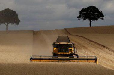 Regras sobre resíduos humanos na agricultura estão 'desatualizadas'